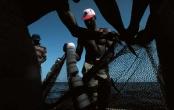 Elmina 17 January 2002